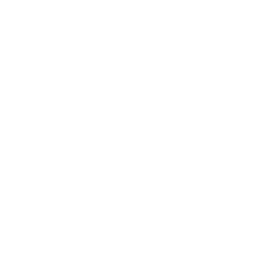 Livraison de fleurs les fleurs de  Louise Reims Cormicy